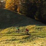 Alpbach-Bischoferalm-Holzalm #7