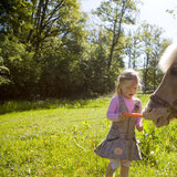 Mädchen füttert Pferd - ©Sauerland Tourismus | Tanja Evers