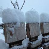 Świeży śnieg we Włoszech! - ©Val Gardena