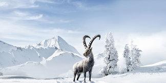 Regio in de kijker: Graubünden - ©Graubünden Ferien