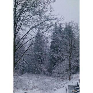 Zieleniec Ski Arena - Pada śnieg.  - ©pl.reddys