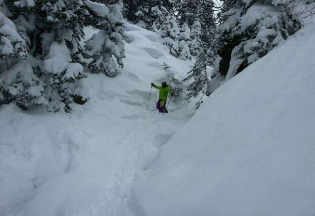 two days of untracked powder (Sat & Sun)
