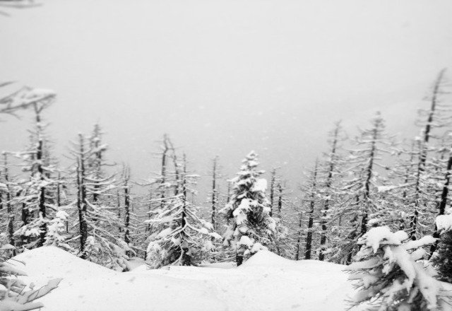 early morning powder was great, is getting wet and skied off though