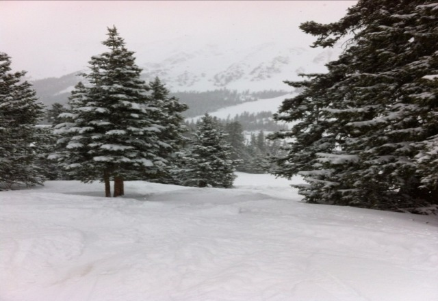 pow day may 30th! at least 6 inches!
