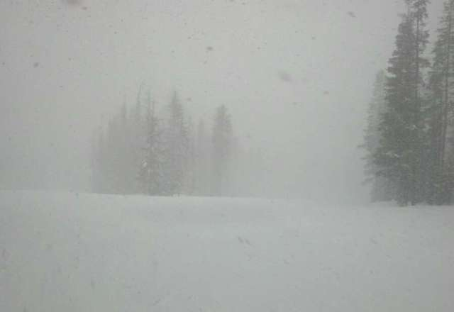 Thursday/21st had fresh tree powder, no groomers just powder... Dumped snowed the last part of the day