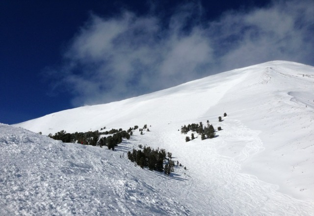 incredible mountain! super awesome pow and woods. wish i lived near here.