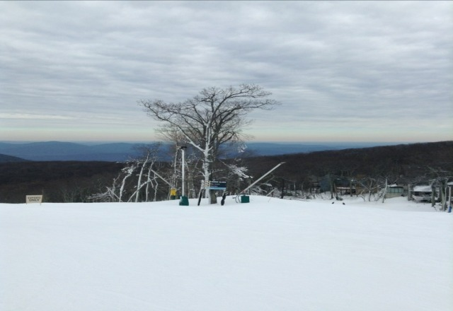 top of big acorn from the weekend