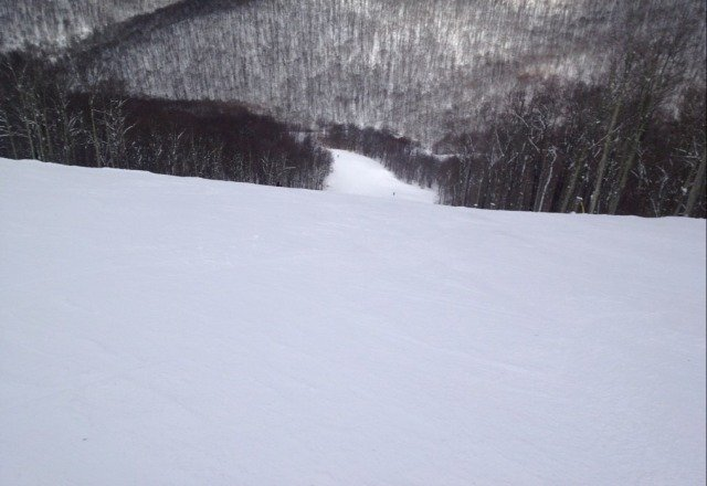 Top of Lower Shay's Revenge.  Plenty of good snow and bumps.  Awesome conditions.