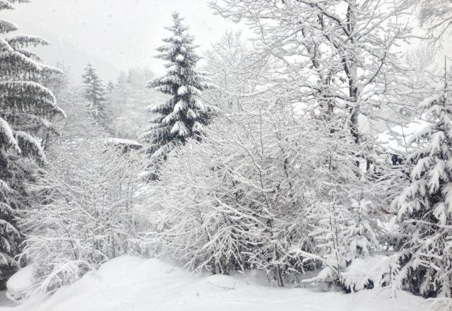 Heavy snow again today, least 6