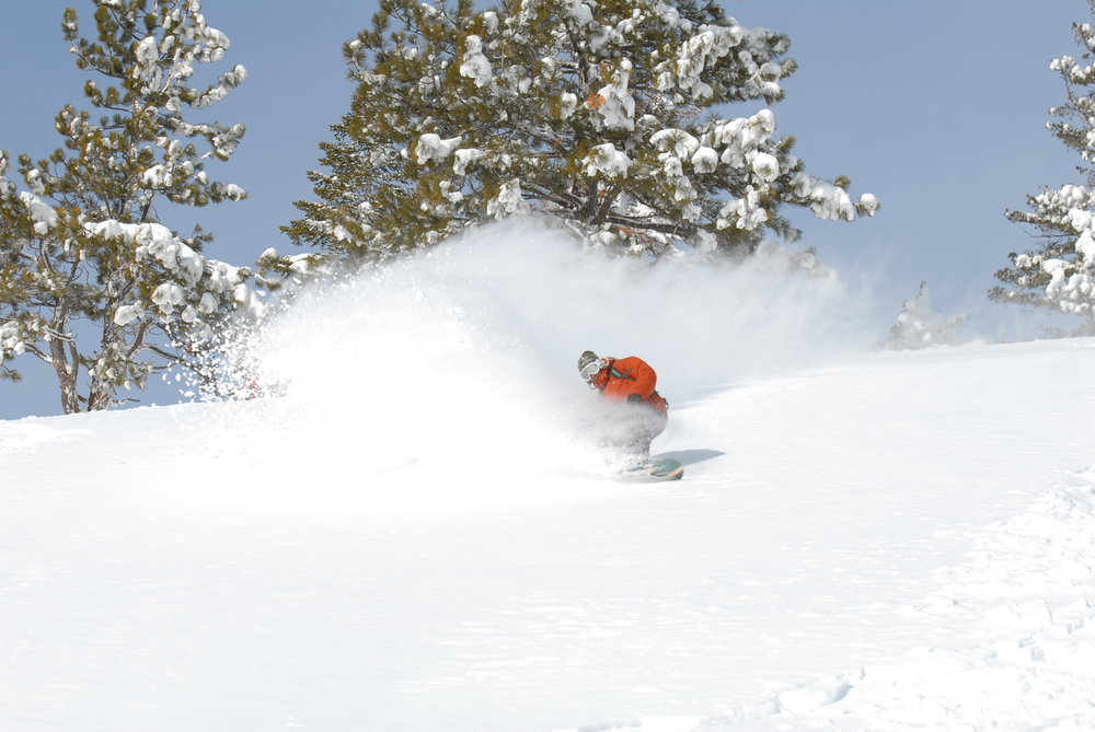 This snowboarder makes fresh tracks at Sugar Bowl Ski Resort, California