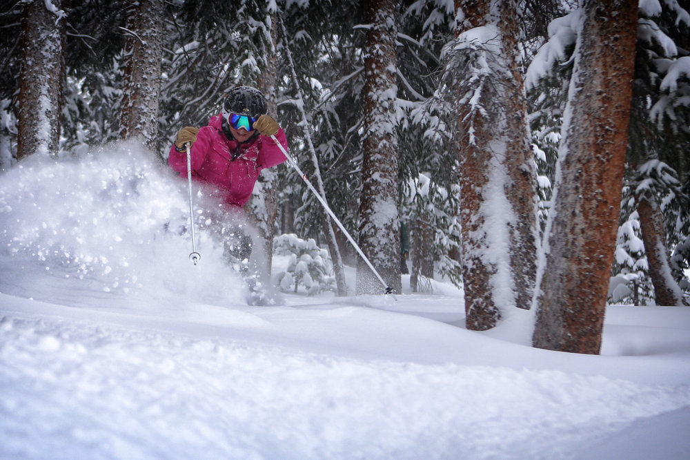 Powder in the Copper trees. - ©Tripp Fay