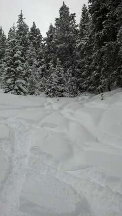 powder. powder. way more than inch