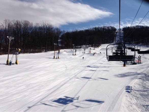 Monday was great. Groomed and no lines. Good job Liberty!