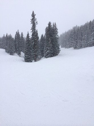 The pow is fresh and deep.