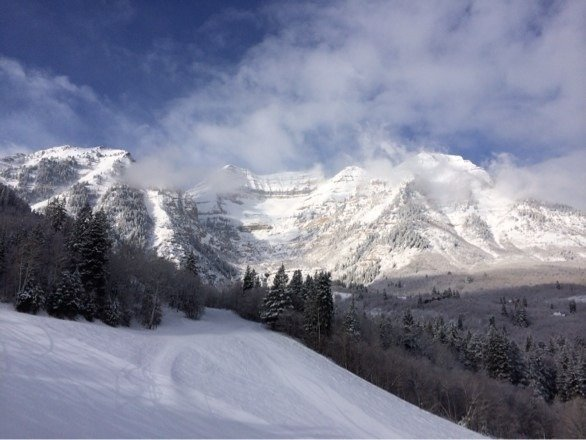 Saturday was the best day of the year on the mountain, and more snow in the forecast this week.  This is the back of Timp taken from Ray's lift.  Only thing better than that view was the snow.