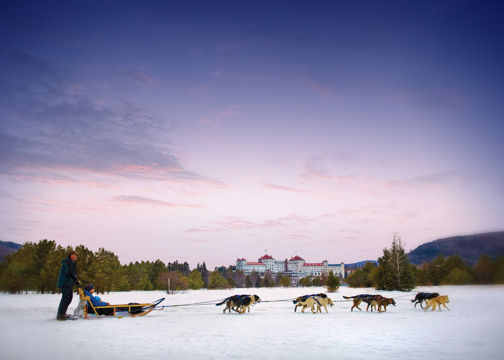 Dogsledding in Bretton Woods, New Hampshire