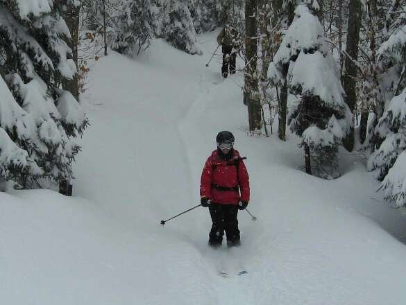 Epic Day at Timberline with champagne powder!  Tree skiing is open for business and powder skiing.