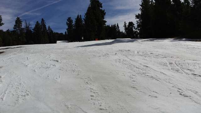 Slushy, a lot of runs closed, but still 100x better than Mammoth and their base lies!