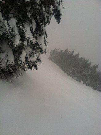 Unbelievable conditions today all over the mountain, Rocky Mountain conditions all day.  Pic is of Upper Tamarack
