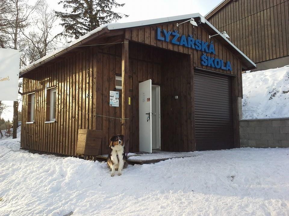 Klíny Ski School - ©Klíny