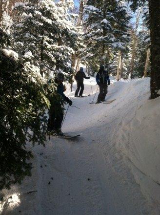 Great tree skiing with powder everywhere wish u were here groomer dan