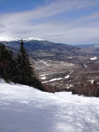 Bumps 'n Humps on every trail. Incredible snow. Woods are thick with fresh powder.