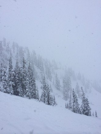 3-19 was the best powder day I've ever had. The report says 3 but they really got 18-24 inches. Today will be epic there.