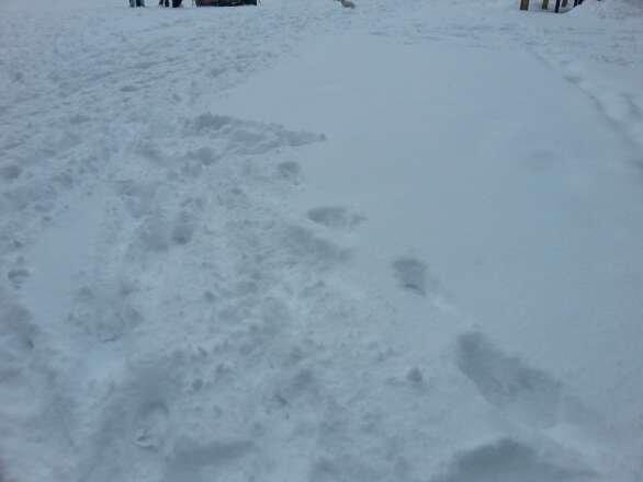 ca tombe à pic pour une super semaine de ski. belle neige fraiche