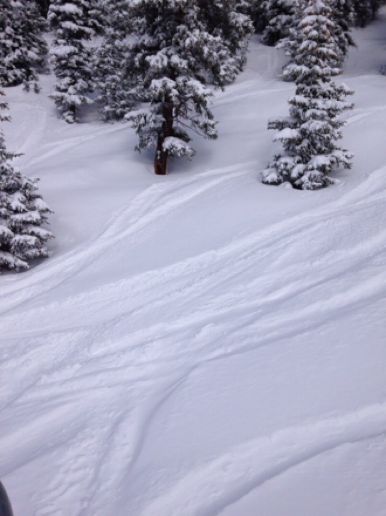 Great skiing today, more like 8-10 inches in most spots by the time it stopped snowing. Knee deep off of nose and in the back glades too, love a basin