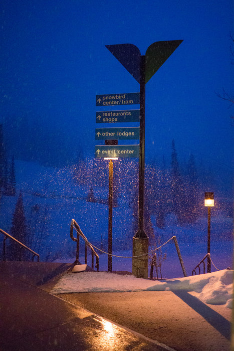 No sleep the night before a powder day!