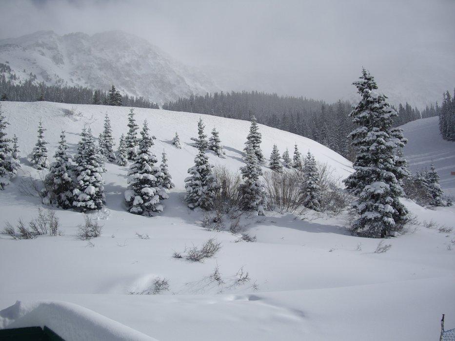 Snowy Arapahoe Basin, CO.