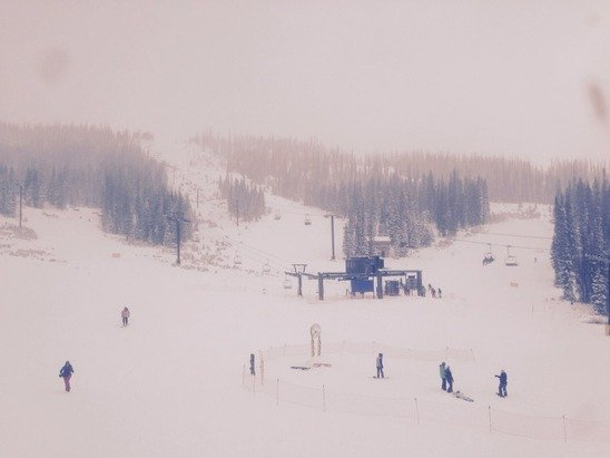 Flurries all day. Lots and lots of powder. Be careful of the rocks though, still plenty that need to be covered up. Also it's $41 a pop this weekend, doesn't get better