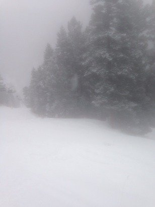 Such a sick day lots of new pow and park was pretty good they even opened some of the advanced terrain