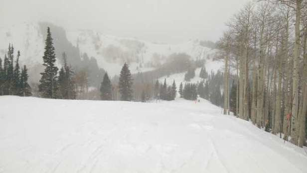 New snow on the upper lifts. Only groomers are open.