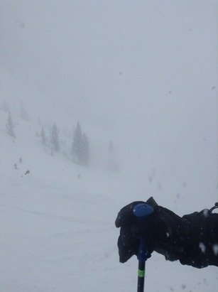 If you looked for it, it was a powder wonderland!