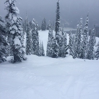 Monday jan 3,4 were insane!tons of powder in the trees.ice and rocks on the runs fernie is the best