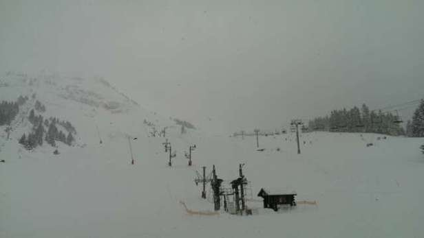 Excellent first days boarding! Cloudy, but perfect powder.