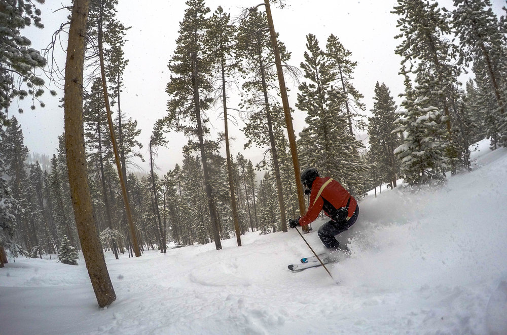 Happy trees happy trees. - ©Winter Park Resort