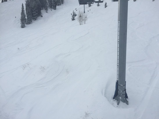 Great powder in the morning, but in the afternoon got a little icy. Overall good though. Didn't wait in one line.