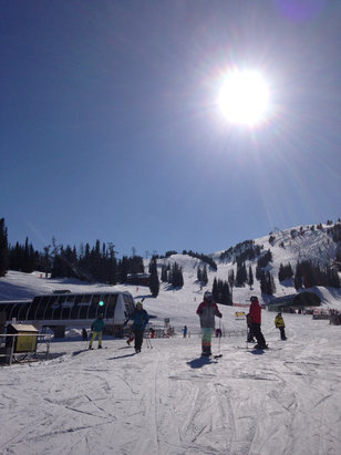 Sunshine Village - Snow conditions are nice. I didn't see any bare spots and there was powder to be had for the folks willing to trek. Beautiful day with no lift lines.