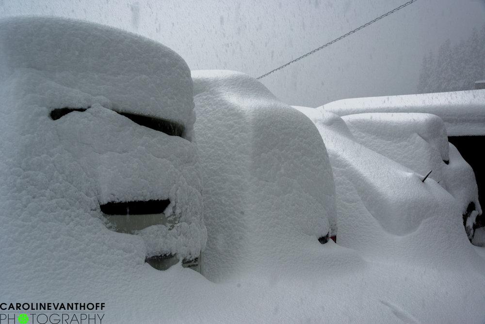So sieht Schnee in Japan aus - ©Caroline Van T Hoff
