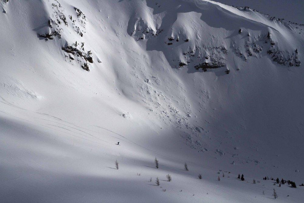 Skiing out-of-bounds bowls at Lake Louise.  - ©Lake Louise