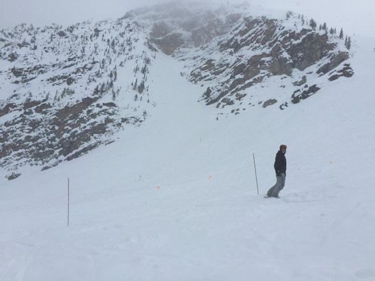 Kicking Horse - First Hand Ski Report
