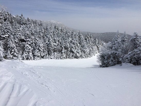 Stowe Mountain Resort - cold, hard w dusting overnight, no ice (almost), no bozos