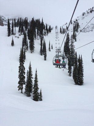 Fernie Alpine - 100% Better than Manitoba. Thanks Fernie folk for sharing your mountain with us!