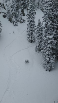 Brighton Resort - knee deep today ! just wish Milleys was still spinning  - ©skibumlifeforme