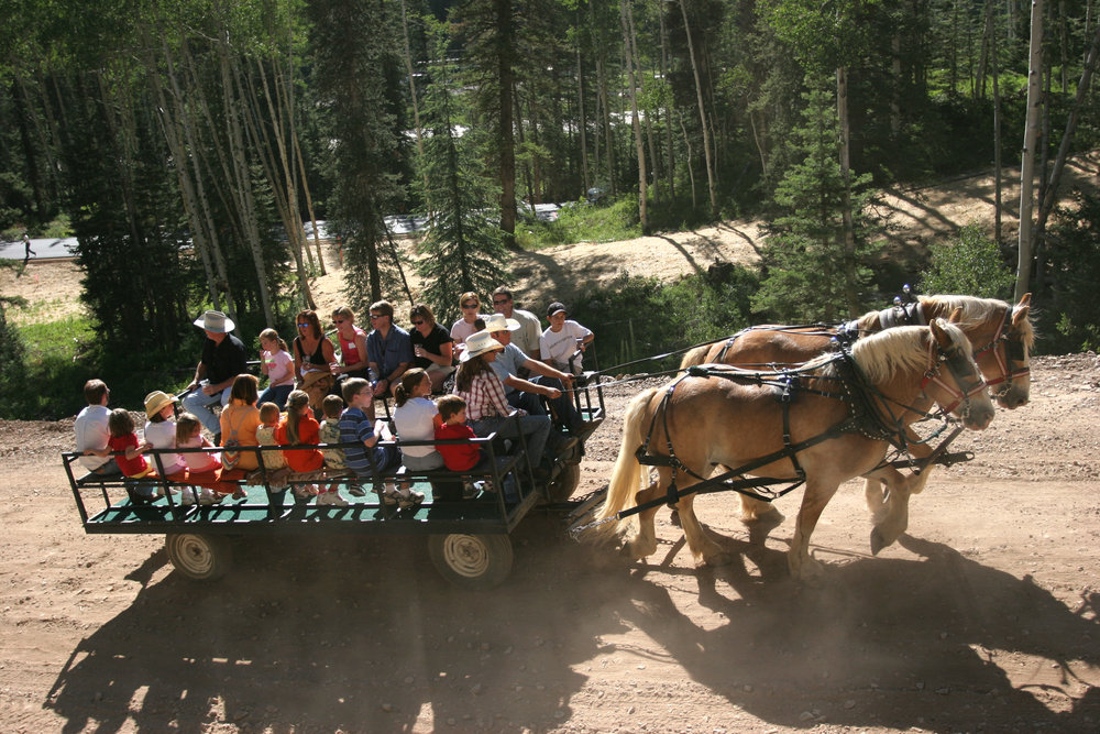 A scenic horse ride in Durango, CO.