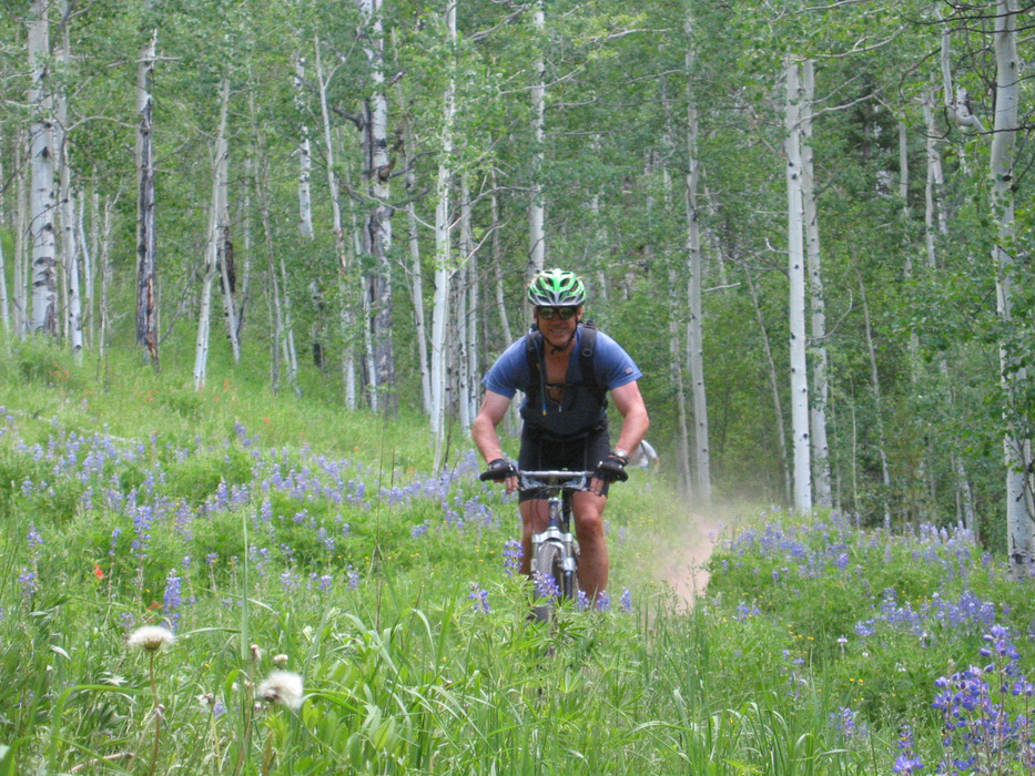 Bike rider passing through a field of lupins. Photo from Gunnison-Crested Butte Tourism Association.