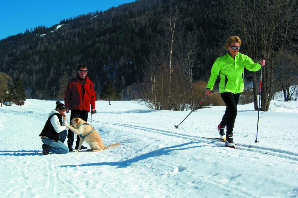 Cross country skier in Bad Kleinkirchheim, Austria
