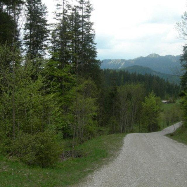 Galgenwurfsattel - Schronbachtal #22